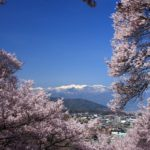Chasing cherry blossoms at the most beautiful villages in Japan