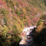 "Nagiso town ""Autumn leaves at Kakizore Gorge"""