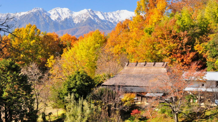 Chasing the autumnal leaves of the most beautiful village of Japan